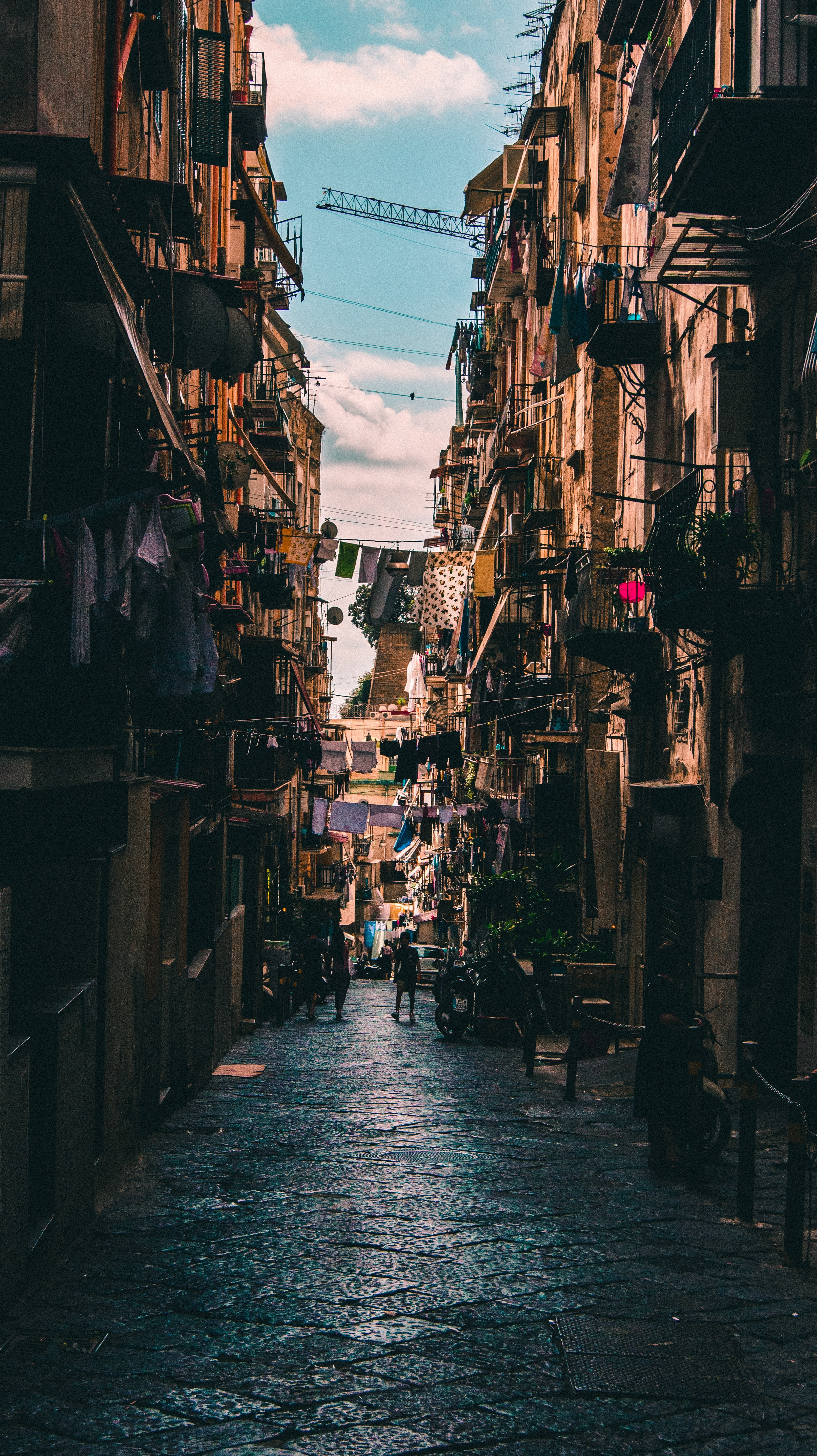 The King of Naples
